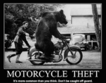 motorcycle-theft.png
